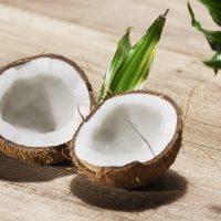 Naturkosmetik und Pflanzen Extrakte mit DMSO und Kokosnuss